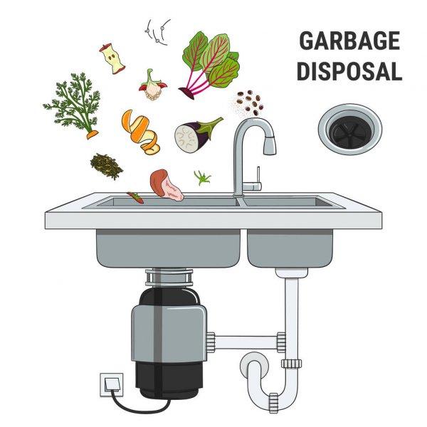 Garbage Disposal Infographic